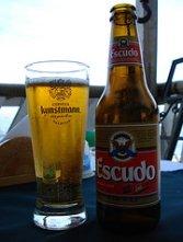 Cerveza - beer
