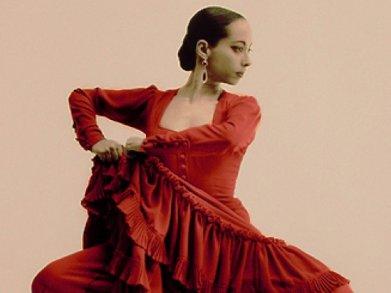 spanishidioms-flamenco.jpg