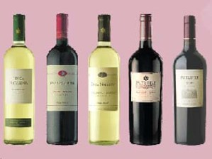 argentina-wine.jpg