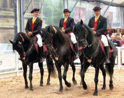 3 Menorcan horses