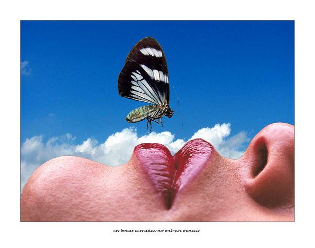 en boca cerrada no entran moscas