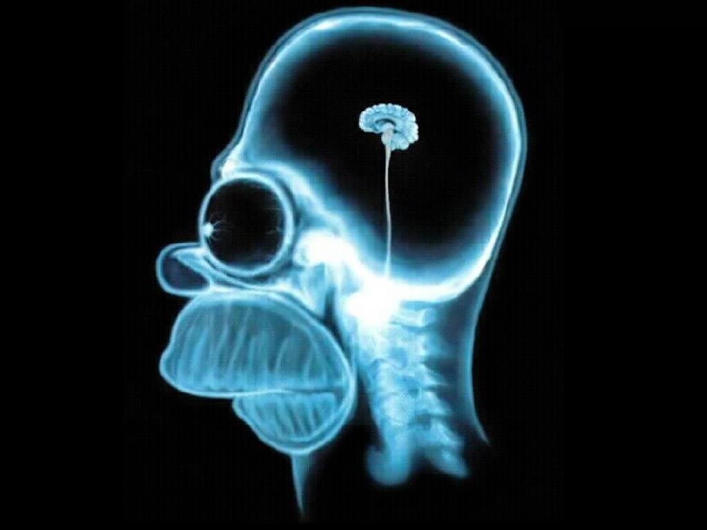 brain better than brawn