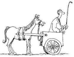 cart before the cart