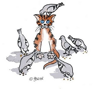 put the cat among the pigeons