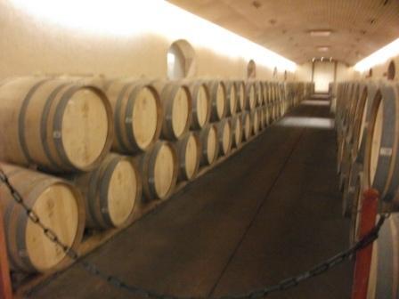 chile-concha-y-toro-cellar-of-barrels.JPG