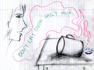 no use crying over spilt milk