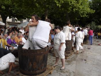 Grape treading - Festa des Vermar