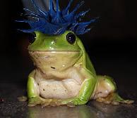 Cuando las ranas críen pelo