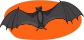 Bat - murcielago