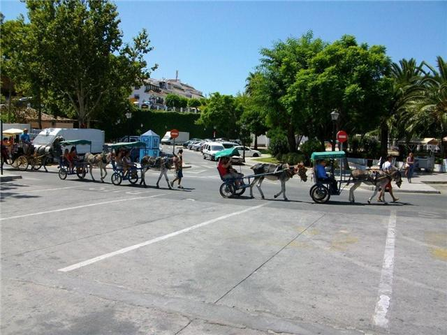 Mijas burros taxis