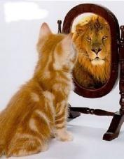 mirate-en-ese-espejo.jpg