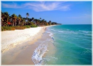 Naples-florida-beach.jpg