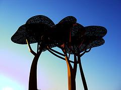 Los Pines de Mariscal