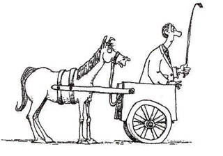 to put the cart before the horse