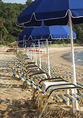 Hamacas a la playa