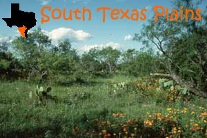 texas-south-plains.jpg