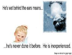 to-be-wet-behind-the-ears.jpg