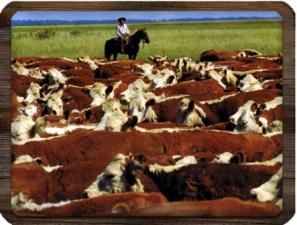 argentina-beef.jpg