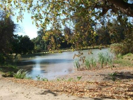 chile-concha-y-toro-beautiful-grounds-lake.JPG