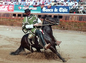 chile-rodeo.jpg